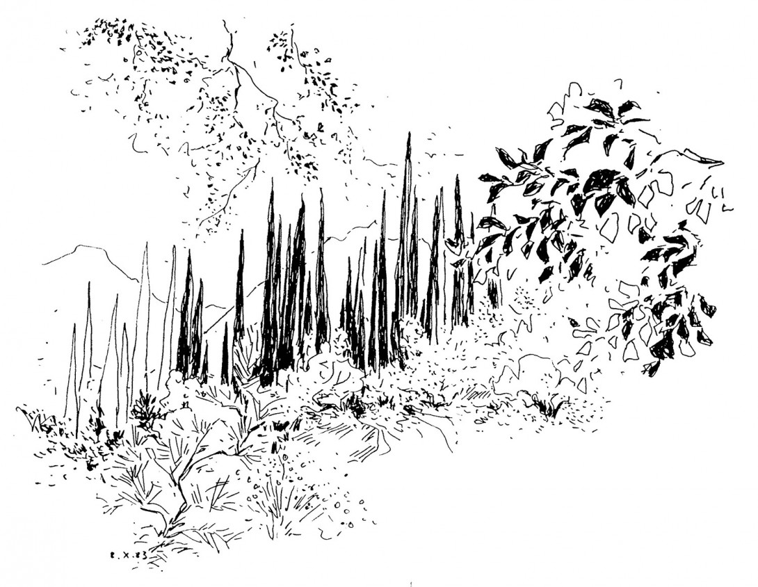 Karl Stadler - Landschaft auf Kephallonia. Griechenland (1983)